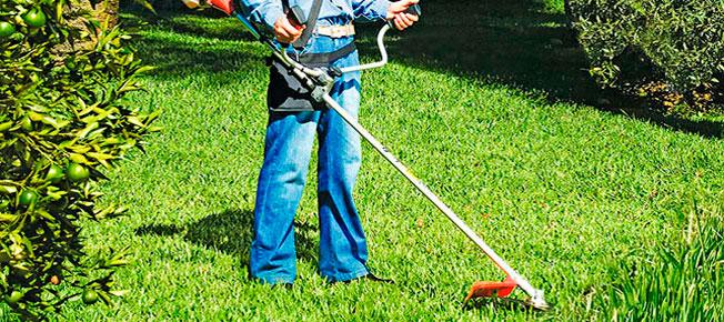 Qual a diferença entre Roçadeira, Aparador e cortador de grama?